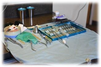Tricare Dental Program The Official Army Benefits Website